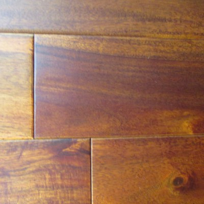 Sand Coast Acacia Golden Walnut