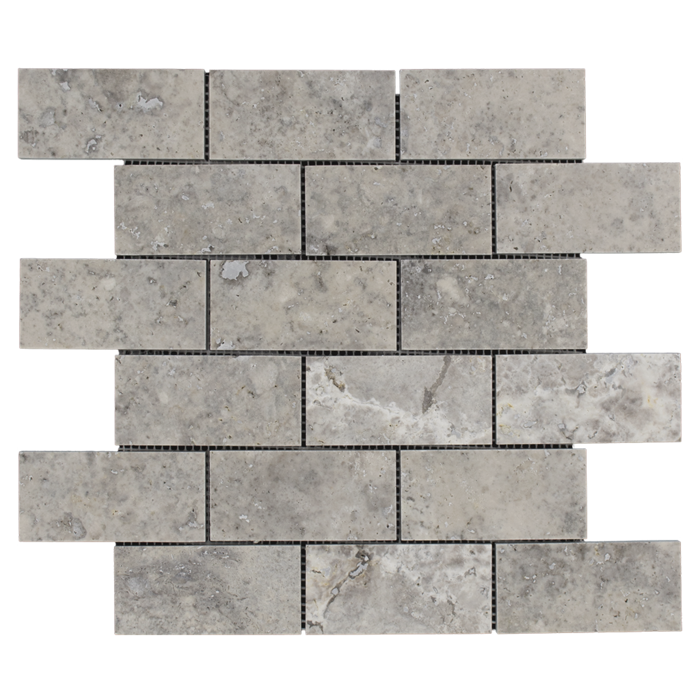 2x4 Silver Travertine Honed
